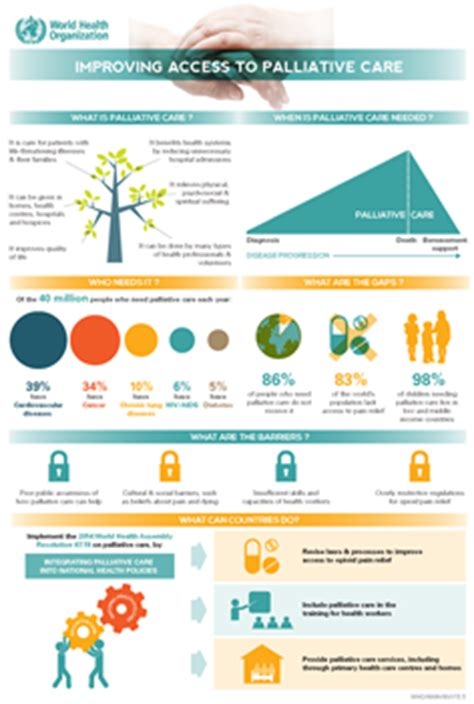 ncds infographics  palliative care
