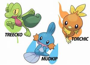 Gallery For > Pokemon Torchic Mudkip Treecko | Pokemon ...
