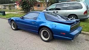 Florida 1991 Trans Am