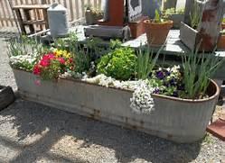 How To Plant A Garden Pot  Sunset