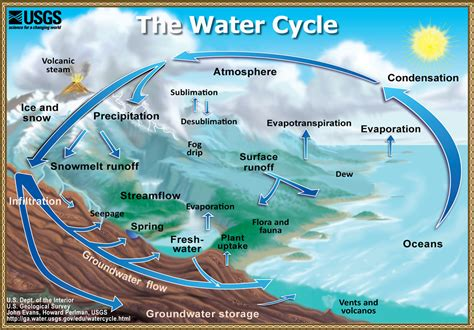 What Is The Water Cycle?  San Jacinto River Authority
