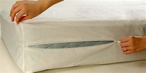 mattresses for living bed bug encasements