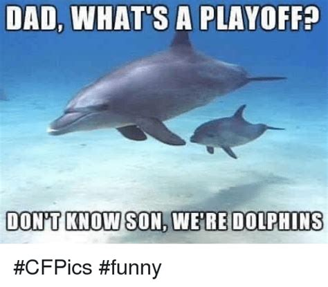 Miami Dolphins Memes - 25 best memes about dolphins dolphins memes