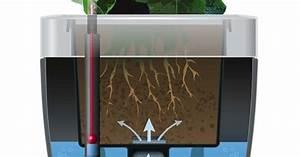 Bewässerungssystem Balkon Selber Bauen : blumenk sten mit wasserspeicher mein sch ner garten ~ Whattoseeinmadrid.com Haus und Dekorationen