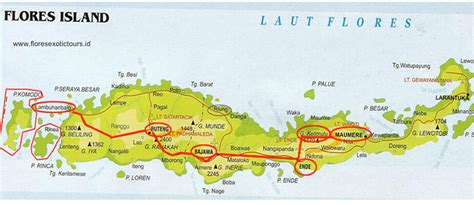 flores indonesia history ethnic  languages