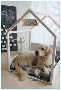 best medium sized dog beds dog beds and costumes With best dog beds for medium dogs