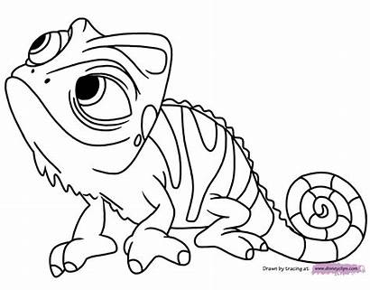 Coloring Tangled Pascal Pages Pdf Disneyclips Funstuff
