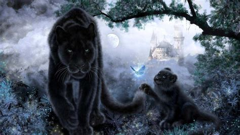 Black Jaguar Animal Hd Wallpapers - black jaguar wallpaper wallpapersafari