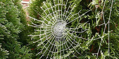 ukraine spider web christmas ornament nomadwomen