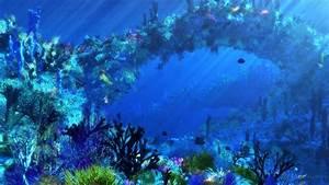 Ocean Underwater Wallpaper