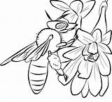 Bee Coloring Pages Printable Honey Bees Cute Drawing Print Template Drawings Templates Cliparts Flowers Clip Popular Comments sketch template