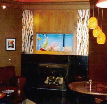 crazy aquarium fireplace idea hearthcom forums home