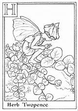 Coloring Pages Alphabet Fairy Flower Fairies Cereal Letter Printable Colouring Herb Print Adult Twopence Butterfly Sheets Books Abc Letters Flowers sketch template