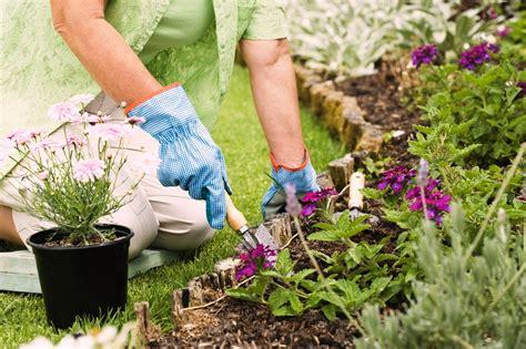 garden in a can designing a flower garden greenmylife anyone can garden