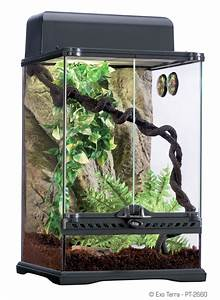 Exo Terra : Habitat Kit Rainforest / Starter Kit