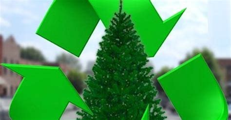 waste management christmas trees tree recycling city of irvine