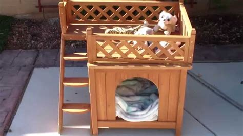 Excellent Doghouse With Small Balcony Youtube