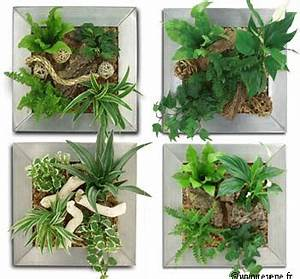 Cadre Vegetal Leroy Merlin : cadre vegetal leroy merlin ~ Melissatoandfro.com Idées de Décoration