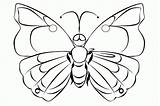 Butterfly Coloring Caterpillar Popular sketch template