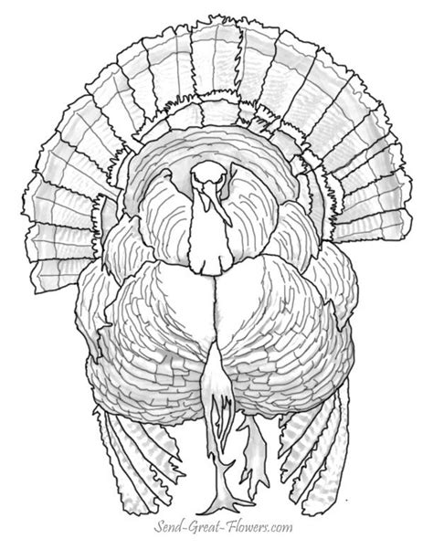 detailed thanksgiving coloring pages festival collections