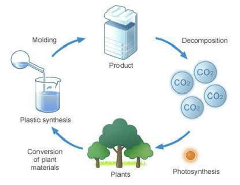 Diagram Of Plastic by 10 Cycle Of A Biodegradable Plastic