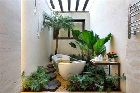pflanzen badezimmer pflanzen im badezimmer die besten vorschläge für sie