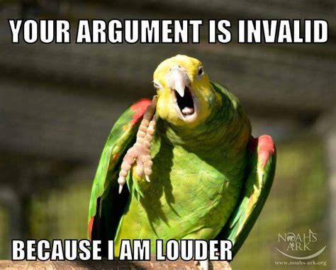 Meme Bird - your argument is invalid because i am louder and a parrot memes pinterest bird pet