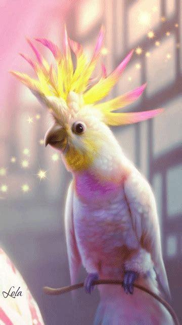 decent image scraps parrot animation