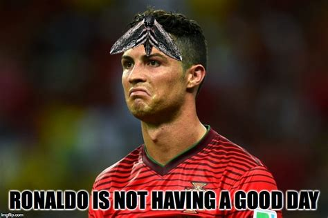 Ronaldo Meme - did anyone else see the moth that landed on his head in todays game against france imgflip