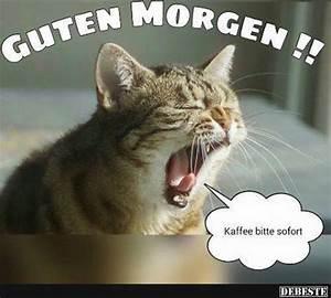 Lustige Guten Morgen Kaffee Bilder : kaffee bitte sofort lustige bilder spr che witze echt lustig ~ Frokenaadalensverden.com Haus und Dekorationen