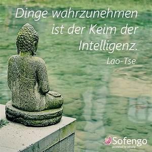 Buddha Sprüche Bilder : 424 best sofengo zitate images on pinterest proverbs quotes thoughts and dalai lama ~ Orissabook.com Haus und Dekorationen