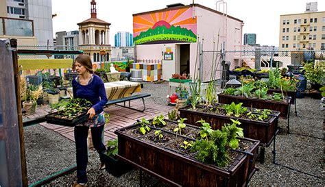 Urban Farming, A Bit Closer To The Sun  The New York Times
