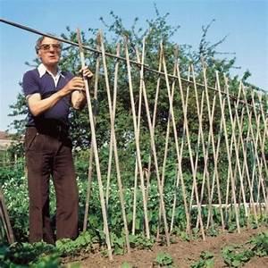 Comment Tuteurer Les Tomates : tout savoir sur les tuteurs au jardin ~ Melissatoandfro.com Idées de Décoration