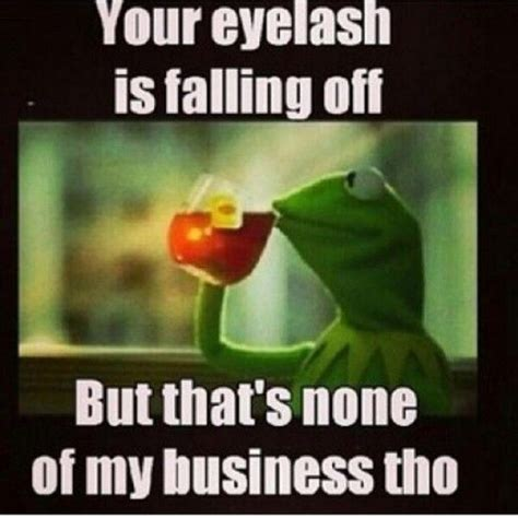 Kermit The Frog Memes - 15 even funnier kermit the frog memes part 2 nowaygirl randoms pinterest eyelashes fake