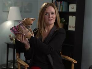 Meet Samantha Bee: the woman who's changing late-night ...