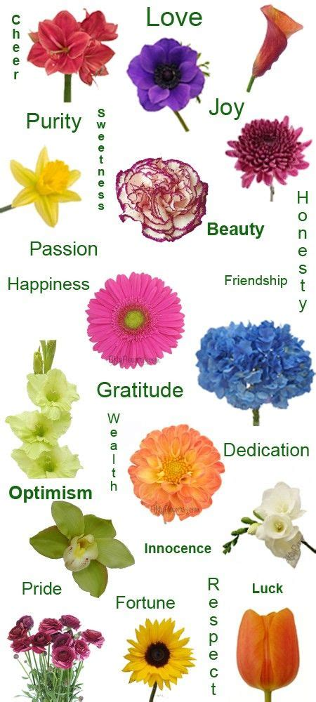 flower color meanings the 25 best flower meanings ideas on