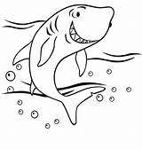 Coloring Shark Pages sketch template
