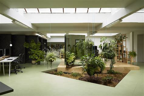 green office interior design green office search inter interior garden
