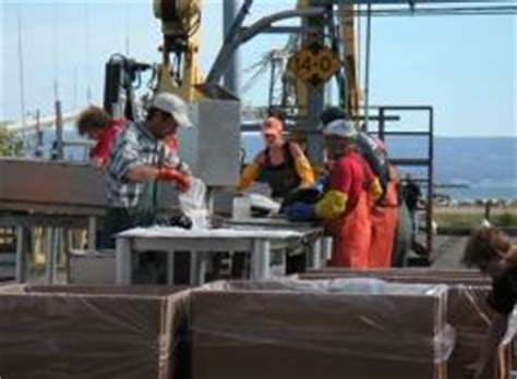alaska seafood processing jobs  fishing boat jobs