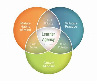 Agency Learner Auckland Building Attended Workshops Already