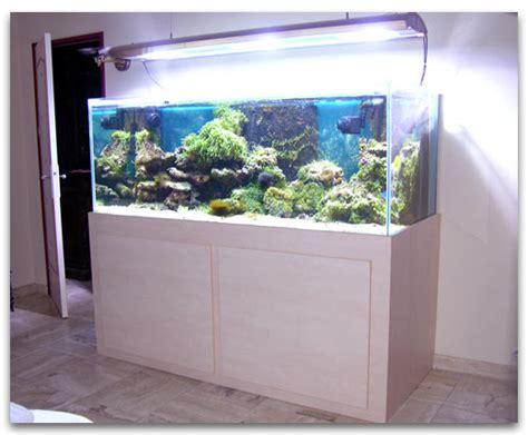 l eau de mer pour l aquarium marin abri sous roche
