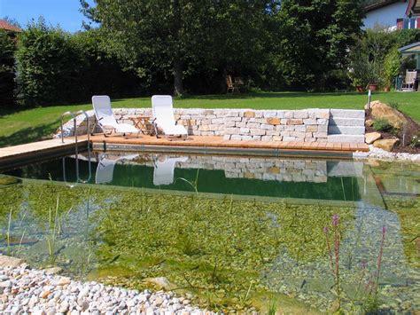 naturpool oder schwimmteich schwimmteich naturpool gartengestaltung gartenbau reischl bayerischer wald