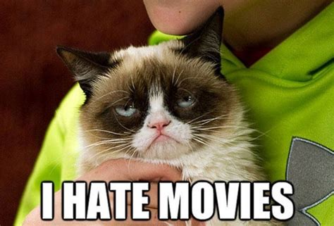 Grumpy Cat From Memes To Movies  Hype Malaysia