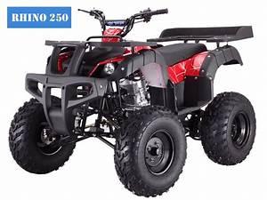 250cc Rhino Atv Manual