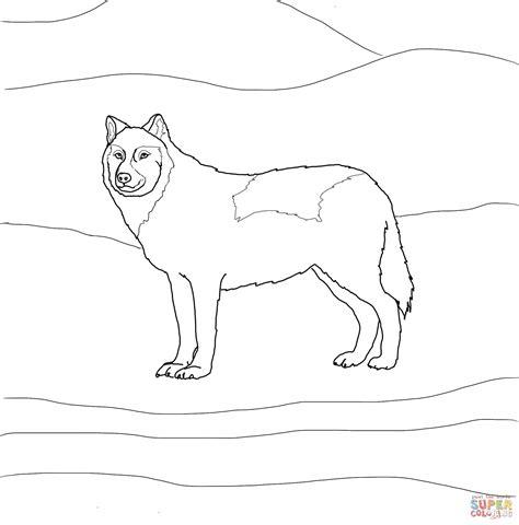 Coloriage Loup Arctique Blanc Coloriages Imprimer