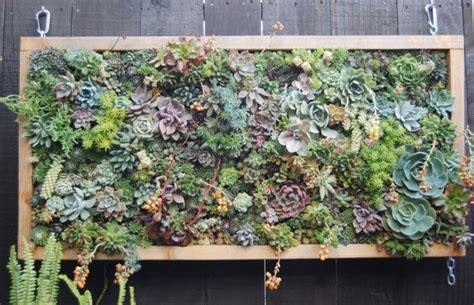 Vertical Succulent Garden by Ewa In The Garden Low Maintenance Succulent Vertical Garden