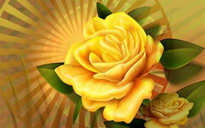 Yellow Rose Wallpapers Wide