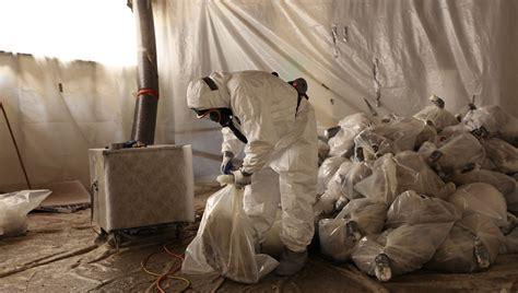asbestos abatement    pros  mold