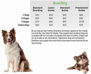 barking hound village boarding With dog boarding sites