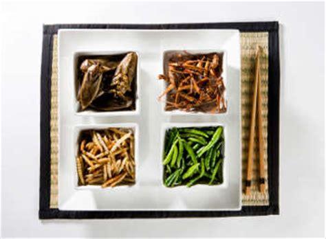 cuisiner les insectes comment cuisiner des insectes